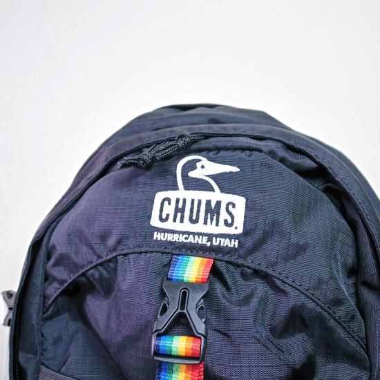 CHUMS SPRING DALE 25L