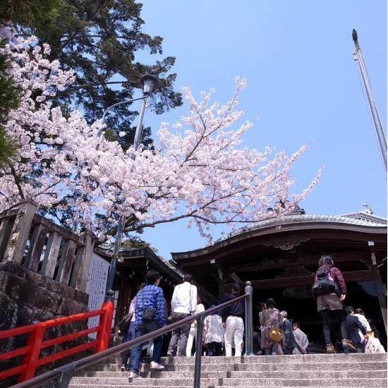 中山寺-清荒神 お花見ハイク 9.APRIL 2014