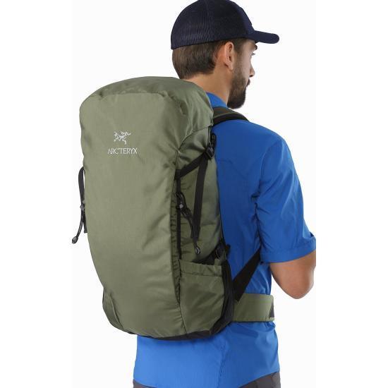 aBrize-32-Backpack-Joshua-Tree-Back-View_small